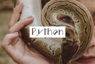 Pythonの概要と環境構築について